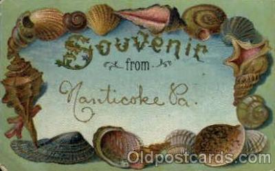 bor001056 - Nanticoke, PA, Pennsylvania, USA Shells, Shell Border, Postcard Post Card