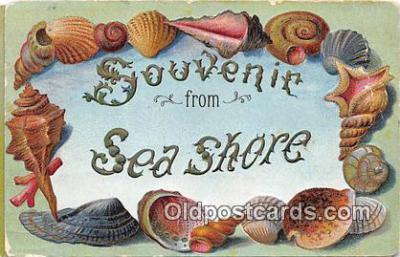 bor001081 - Sea Shore Postcard Post Card