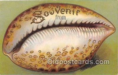 bor001083 - Postcard Post Card