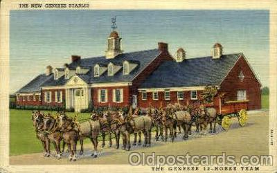 bre001064 - Genese Brewing Co. Inc.  Genesee 12 Horse Team & Stables, Rochester, New York Beer Brewery, Breweries, Postcard Post Card