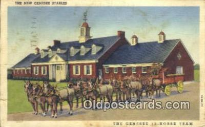 bre001213 - The Genesee 12 Horse Team Rochester, NY, USA Postcard Post Cards Old Vintage Antique