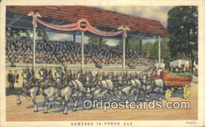 bre001253 - The Genesee 12 Horse Team Rochester, New York, USA Postcard Post Cards Old Vintage Antique