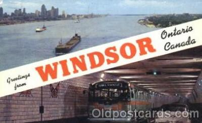 bus010076 - Windsor Bus, Buses Postcard Post Card