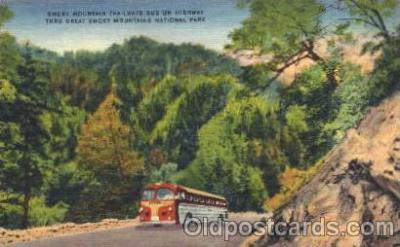 bus010077 - Smoky Mountain Trailways Bus, North Carolina, Nc, USA  Windsor, Ontarion, Canada Bus, Buses Postcard Post Card