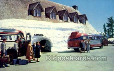 bus010103 - Mt Rainier National Park Buses, WA USA Bus Buses, Old Vintage Antique Post Card Postcard