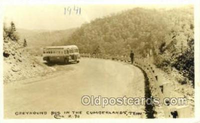 bus010158 - Greyhound Bus, Cumberland, TN USA Bus Buses, Old Vintage Antique Post Card Postcard