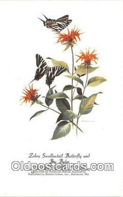 but001133 - Zebra Swallowtail Butterfly & Bee Balm Artist RT Peterson Postcard Post Card