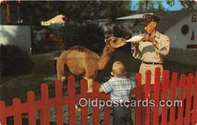 bbb001082 - Children's Zoo Kansas City Park Department Postcard Post Card