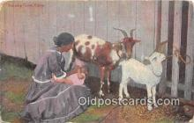 bbb001087 - Nursing Goat Cuba Postcard Post Card