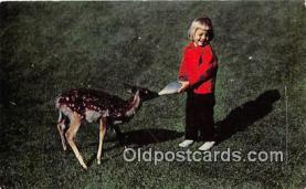 bbb001094 - Two Little Dears Michigan Postcard Post Card