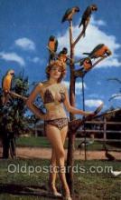 bea001183 - Bathing Beauty Old Vintage Antique Postcard Post Card