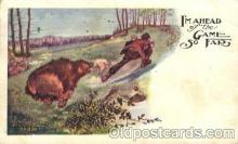 ber001070 - Bear, Bears, Postcard Post Card