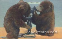 ber001199 - A Cheery Hello Bear Bears Postcard Post Card Old Vintage Antique