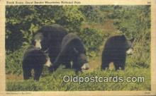 ber001203 - Great Smoky Mountain National Park Bear Bears Postcard Post Card Old Vintage Antique