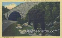 ber001220 - Great Smoky Mountain National Park Bear Bears Postcard Post Card Old Vintage Antique