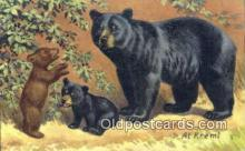 ber001256 - Artist Al Kreml Bear Bears Postcard Post Card Old Vintage Antique