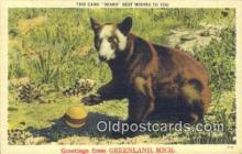 ber001257 - Greetings Greemland, Michigan USA Bear Bears Postcard Post Card Old Vintage Antique