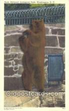 ber001275 - National Zoological Park Washington DC, USA Bear Bears Postcard Post Card Old Vintage Antique