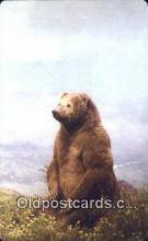 ber001291 - Peninsula Brown, Unimak, Island Alaska Bear Bears Postcard Post Card Old Vintage Antique