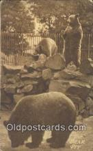 ber001297 - Road of a Thousand Wonders Bear Bears Postcard Post Card Old Vintage Antique