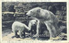 ber001370 - Washington Park, Milwaukee Wisconsin, USA Bear Postcard, Bear Post Card Old Vintage Antique