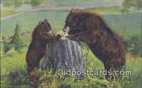 ber001371 - Bear Postcard, Bear Post Card Old Vintage Antique
