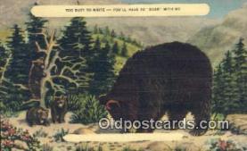 ber001401 - Bear Postcard, Bear Post Card Old Vintage Antique