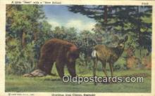 ber001403 - Greetings from Clinton, Kentucky Bear Postcard, Bear Post Card Old Vintage Antique