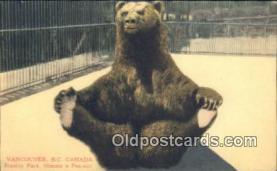 ber001415 - Vancouver BC Canada, Stanley Park Bear Postcard, Bear Post Card Old Vintage Antique