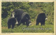 ber001423 - Great Smokey Mountains National Park Bear Postcard, Bear Post Card Old Vintage Antique