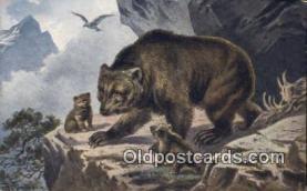 ber001438 - Bear Postcard, Bear Post Card Old Vintage Antique
