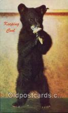 ber001449 - Keeping Cool Bear Postcard, Bear Post Card Old Vintage Antique