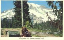 ber001460 - Mt. Rainer National Park Bear Postcard Bear Post Card Old Vintage Antique