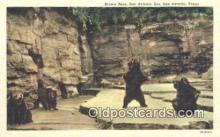 ber001483 - San Antonio Texas Zoo USA Bear Postcard Bear Post Card Old Vintage Antique