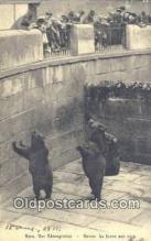 ber001520 - Bern Der Barengraben Bear Postcard Bear Post Card Old Vintage Antique