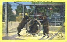 ber001522 - Clinch Park Zoo, Traverse City, Mich, MI USA Bear Postcard Bear Post Card Old Vintage Antique