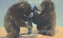 ber001542 - Cheery Hello from New Hampshire, NH USA Bear Postcard Bear Post Card Old Vintage Antique