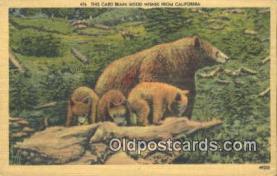 ber001544 - California, USA Bear Postcard Bear Post Card Old Vintage Antique