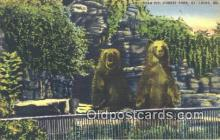 ber001569 - Forest Park Zoo St. Louis MO, USA Bear Postcard Bear Post Card Old Vintage Antique