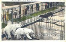 ber001575 - Lincoln Park Zoo, Chicago, Ill, USA Bear Postcard Bear Post Card Old Vintage Antique