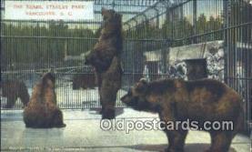 ber001576 - Vancouver BC Canada, Stanley Park Bear Postcard Bear Post Card Old Vintage Antique