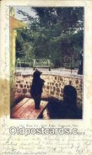 ber001720 - City Park Denver CO, USA Bear Postcard,  Bear Post Card Old Vintage Antique