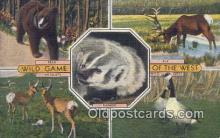 ber001733 - Wild Game of the West, Bear Postcard Post Card Old Vintage Antique