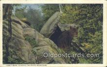 ber001737 - White Mountains New Hampshire, USA, Bear Postcard Post Card Old Vintage Antique