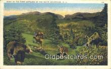 ber001738 - White Mountains New Hampshire, USA, Bear Postcard Post Card Old Vintage Antique