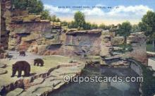 ber001741 - Forest Park Zoo St. Louis MO, USA, Bear Postcard Post Card Old Vintage Antique