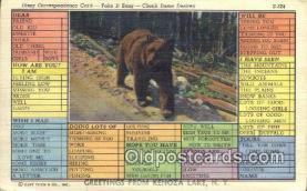ber001755 - Greetings from Kenoza Lake NY, USA, Bear Postcard Post Card Old Vintage Antique