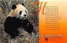ber002053 - World Wildlife Fund Washington, DC Postcard Post Card