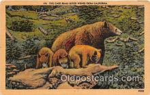 ber002059 - Card Bears Good Wishes California Postcard Post Card