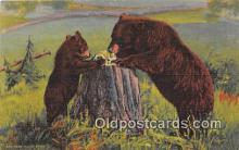 ber002069 - Learning Table Manners Black, Brown, Cinnamon & Grizzly Postcard Post Card